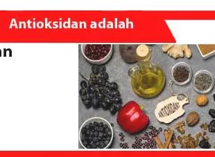 Antioksidan-adalah-Pengertian-Fungsi-Jenis-Efek-Contoh